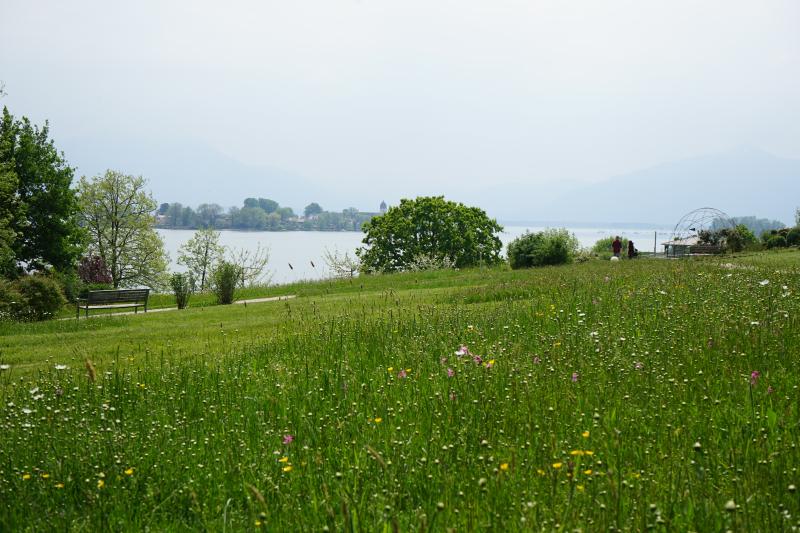 Blick von der Fraueninsel freigegeben von Chiemsee-Alpenland Touristik für